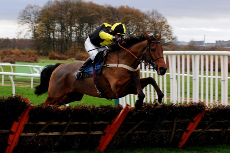 Fill the Power aiming for another C and D win at Wetherby